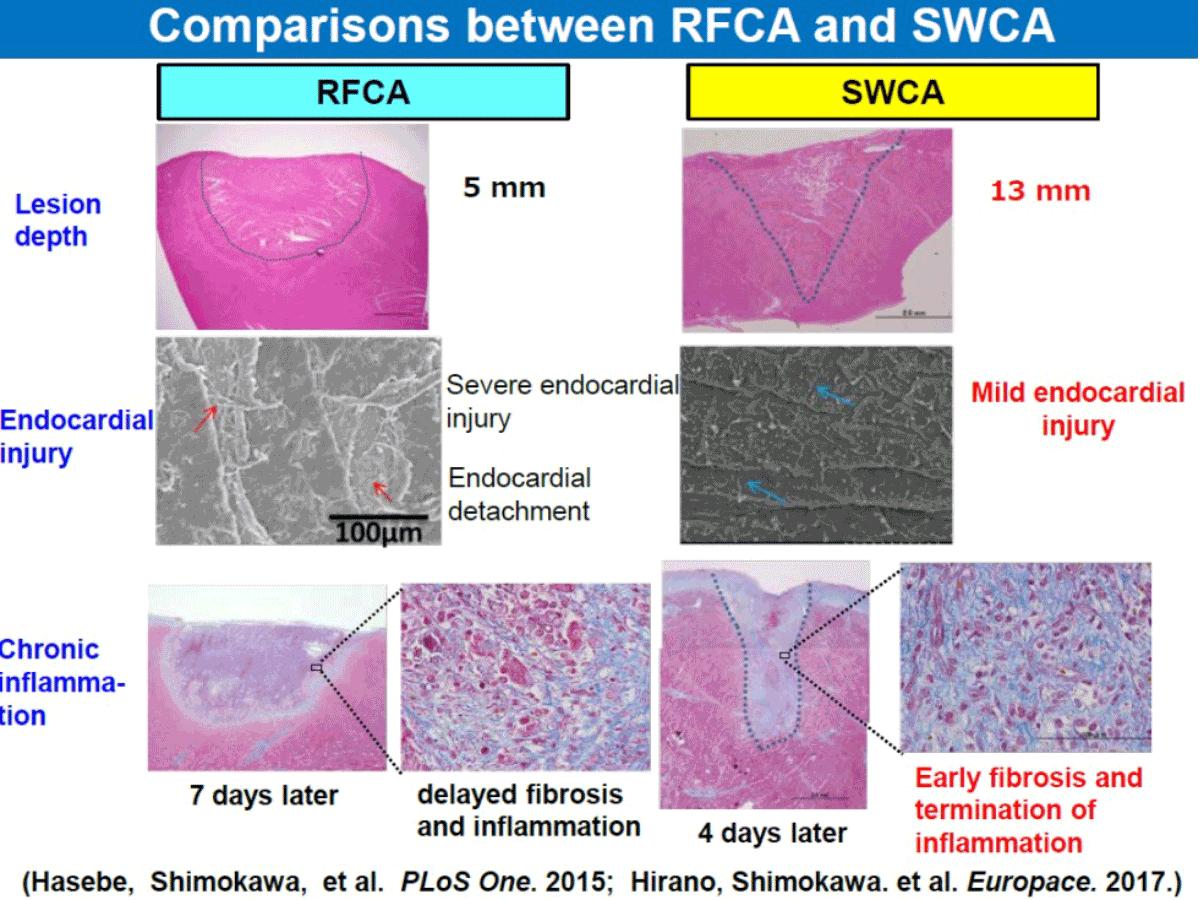 SWCA-2